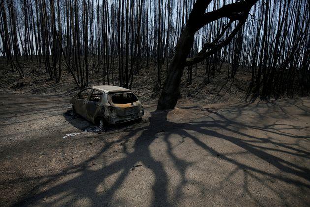 La carretera de Portugal en la que murieron abrasadas 47 personas no se cerró a