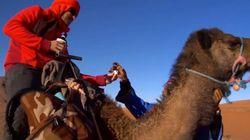 Cosas que hacer en Marruecos a cambio de whisky