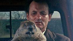 La marmota es