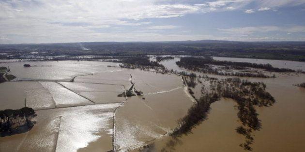 Pérdidas de 50 millones de euros y 45.000 hectáreas inundadas por la crecida del