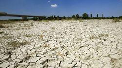 Estas son las consecuencias del cambio climático en