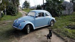 El escarabajo de José Mujica, objeto de deseo de un fetichista jeque