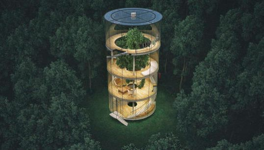 La casa de cristal en un árbol a la que querrás mudarte