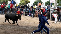 Tordesillas, condenado por la celebración irregular del Toro de la