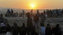 ENCUESTA: ¿Acogerías a un refugiado en tu