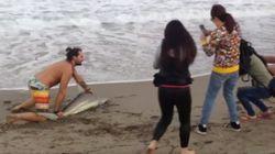 Otra vez la estupidez humana: un bañista saca del mar a un tiburón para hacerse una