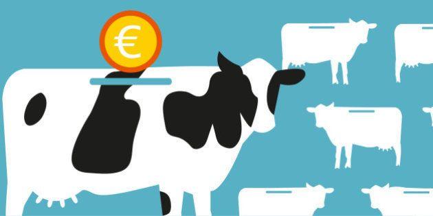 ¿Por qué protestan los ganaderos? Las claves del conflicto por el precio de la
