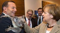 No, estas fotos de políticos y koalas no son montajes