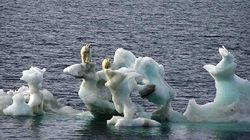 El Cambio Climático y el síndrome de