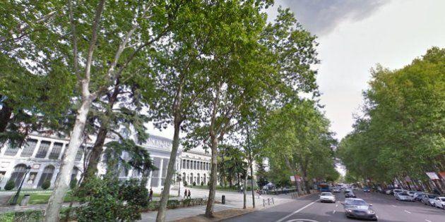 El Ayuntamiento de Madrid cerrará el Paseo del Prado los domingos por la