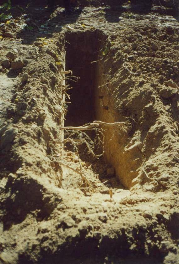 Se cumplen 15 años de la exhumación de la primera fosa común del movimiento