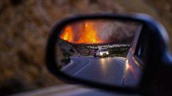¿Por qué se producen incendios forestales en