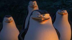Una tropa de pingüinos de Madagascar llegan a las