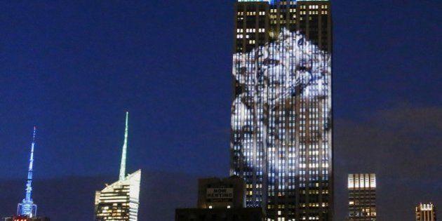 El Empire State se cubre de imágenes de animales en peligro de extinción