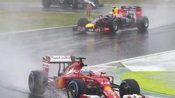 Fernando Alonso y las hojas de la