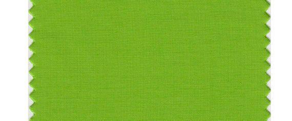 ¿Te gusta el color Pantone de