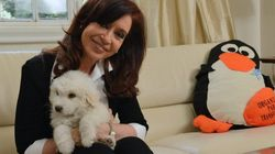 Cristina Fernández vuelve a tomar el mando de