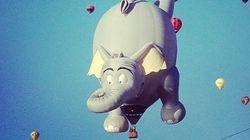El día que los elefantes vuelen...