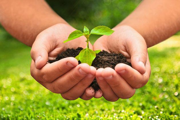España: Objetivos de Desarrollo Sostenible un año