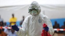 Ya se sabe cómo empezó el brote de ébola que afecta a África