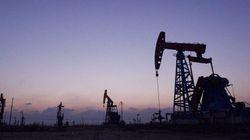 Países 'no-OPEP' pactan retirar 558.000 barriles de petróleo del