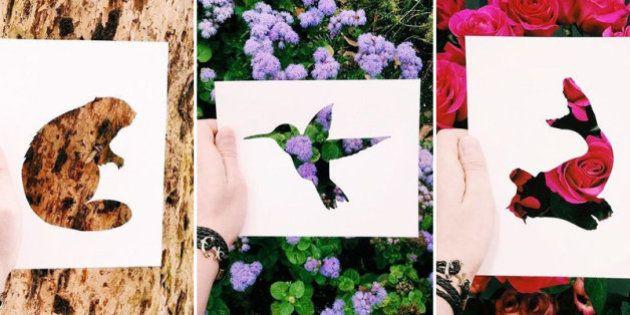 Con una hoja de papel y su amor por la naturaleza, este artista de Instagram crea las siluetas