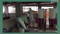 'Master' para quitarse el traje del ébola en una zona de alto riesgo