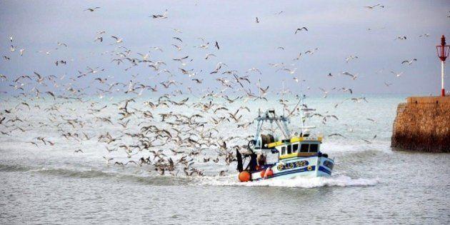 Pesca sostenible: ¿la única