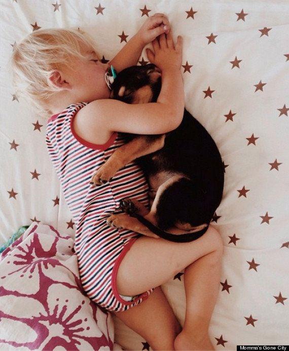La historia de amistad de un niño y su perro... durante la siesta