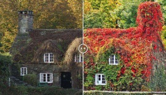 Paisajes otoñales británicos: disfruta de la belleza del cambio de estación