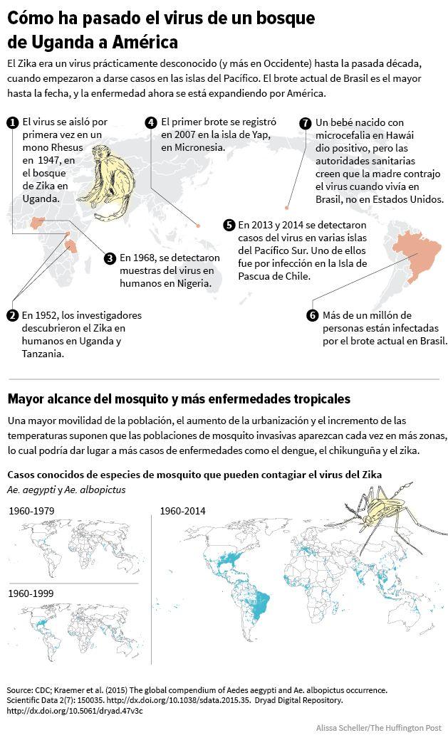 Guía ilustrada para entender el brote del virus del