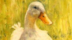 Ada Colau y el pato de