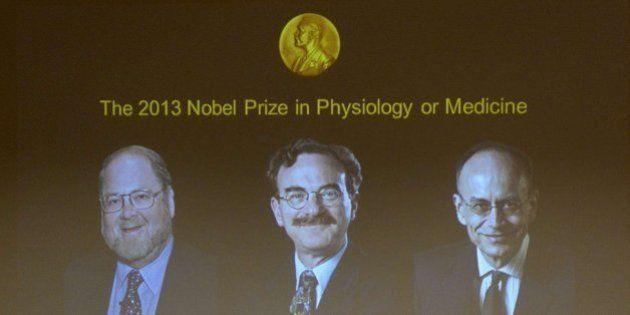 Premio Nobel de Medicina 2013: James E. Rothman, Randy W. Schekman y Thomas C. Südhof