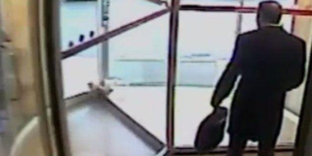 Un médico salva la vida de una gata callejera que quedó atrapada en una puerta