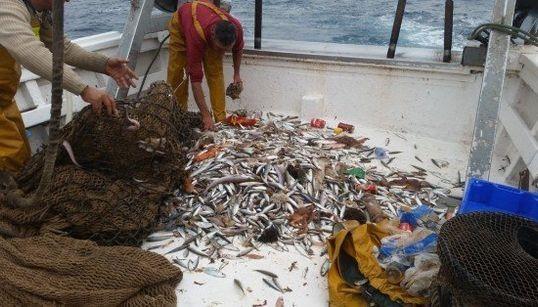 Un día con los pescadores que ayudan a reciclar los residuos del