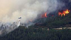 El incendio de la Sierra de Gata ha arrasado más de 5.000