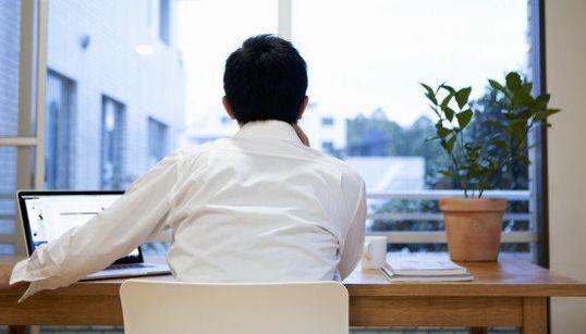 Poner plantas en tu escritorio mejorará tu productividad