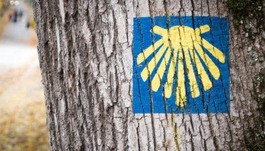 Todos los Caminos llevan a Santiago: las principales rutas para hacer el Camino de
