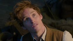 Newt Scamander apareció en Harry Potter y no te diste