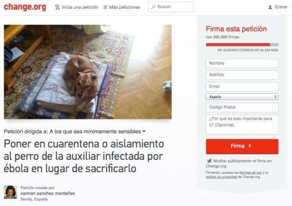 Excálibur: llegan los responsables sanitarios para llevarse y sacrificar al perro de la enferma de