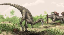 El primer dinosaurio era como un perro con cola de metro y