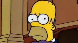 ¿Homer Simpson pidiendo el voto para Unidos Podemos? No, pero