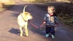 Niño, perro, charco: cómo ponerte de mejor humor en 60 segundos