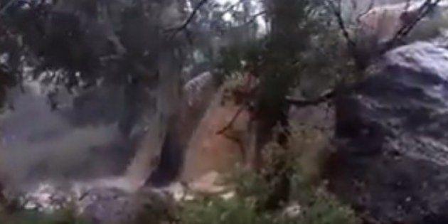 La pasmosa entereza de este hombre golpeado por un árbol cuando graba las lluvias en