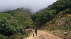 La Junta de Andalucía autoriza una maratón en zona protegida porque