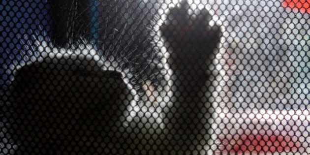 Monty, el gato con Síndrome de Down que ha enamorado a las redes