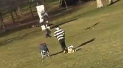 Razones para no creerse el vídeo del águila atrapando al niño