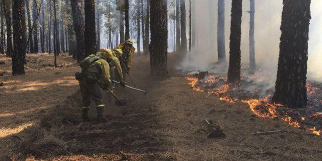 El incendio de La Palma se estabiliza tras arrasar 4.500