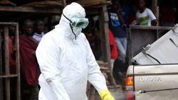 La OMS alerta de que habrá 10.000 contagios semanales de ébola en
