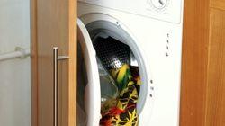 El mejor detergente del mercado es, según la